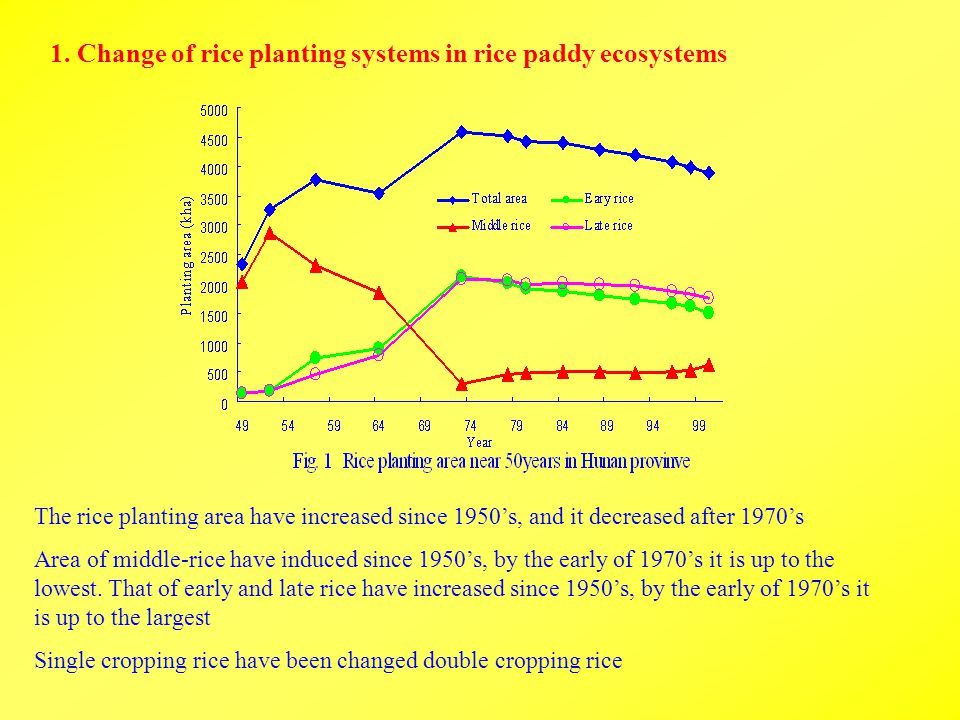 1. Change of rice planting systems in rice paddy ecosystems The rice planting area have increased since 1950's, and it decreased after 1970's Area of