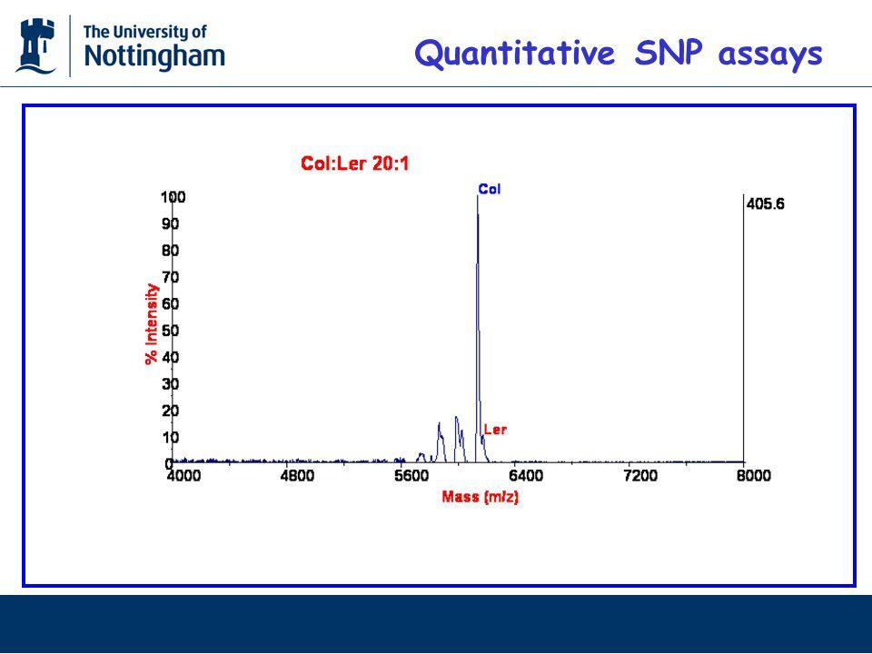 Quantitative SNP assays