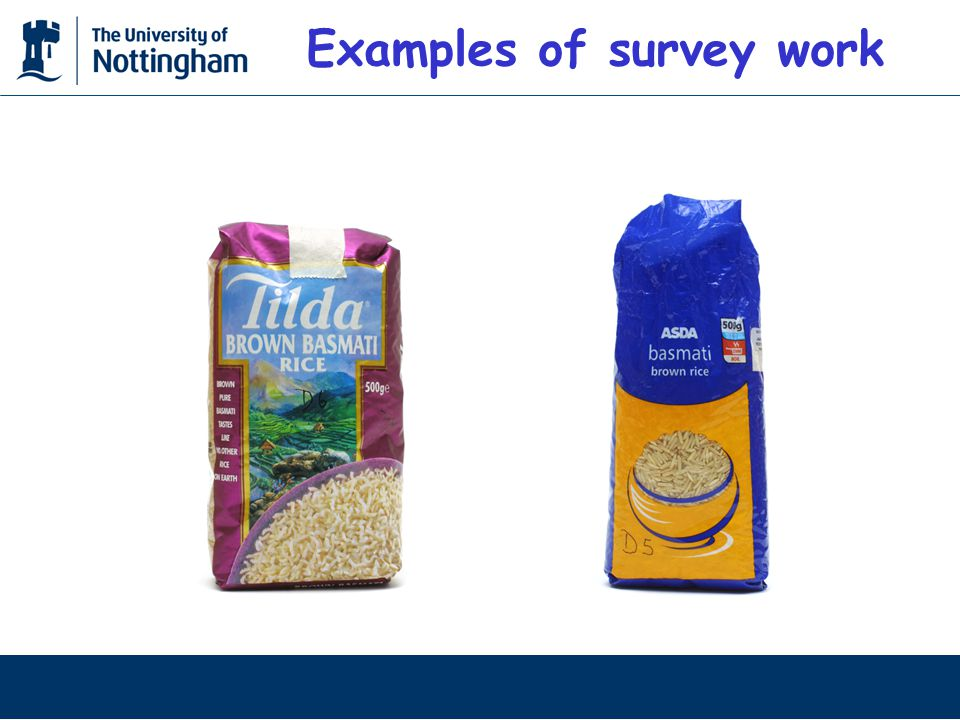 Examples of survey work