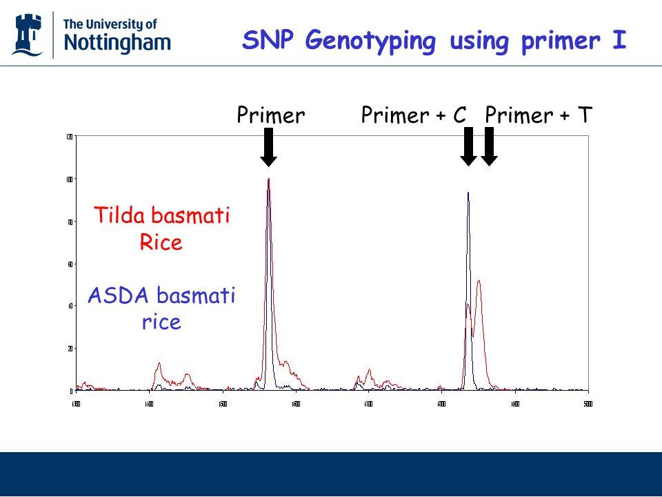 SNP Genotyping using primer I PrimerPrimer + TPrimer + C Tilda basmati Rice ASDA basmati rice