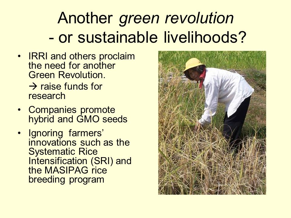 Another green revolution - or sustainable livelihoods.