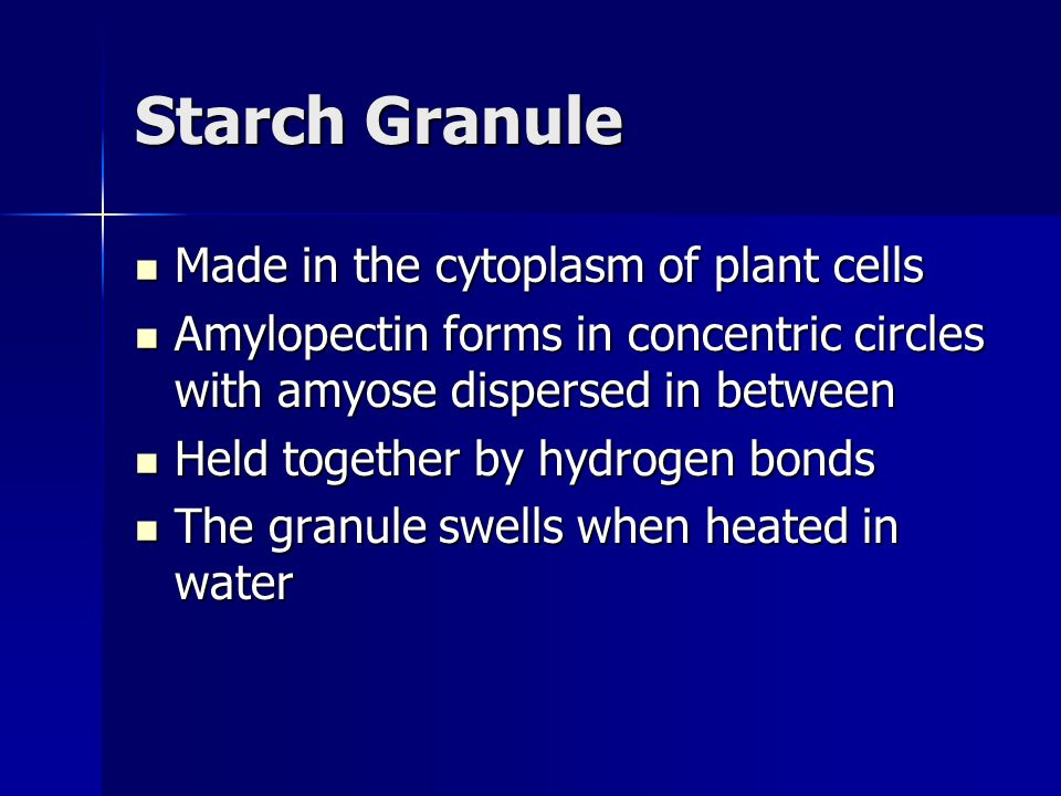 Starch Granule Made in the cytoplasm of plant cells Made in the cytoplasm of plant cells Amylopectin forms in concentric circles with amyose dispersed