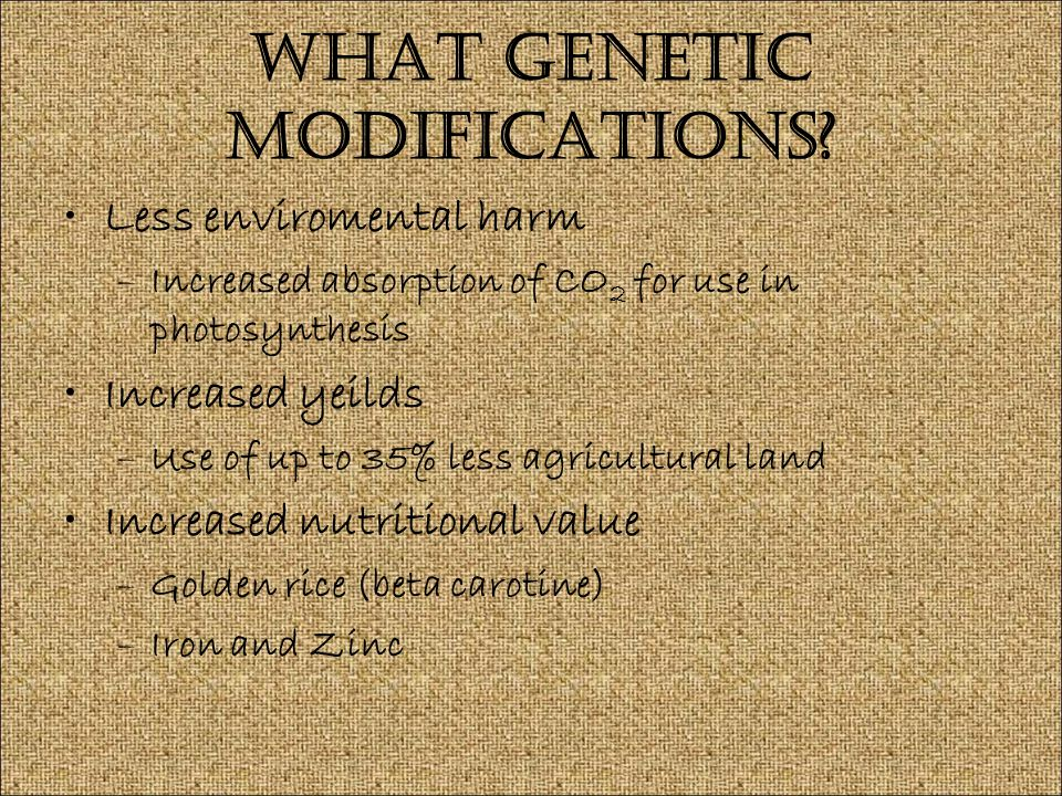 What Genetic Modifications.