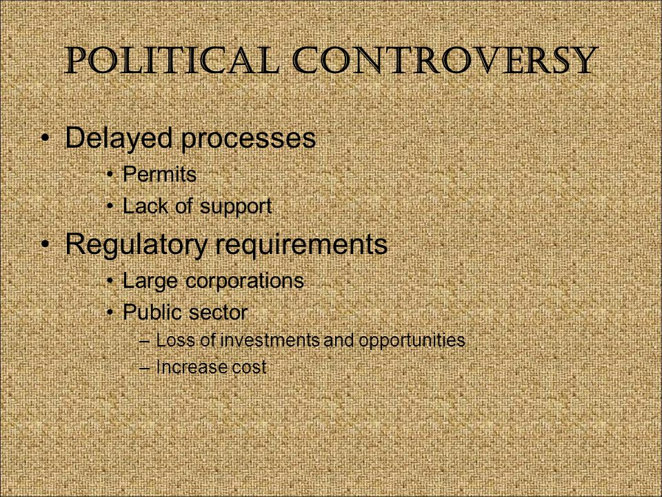 Political Controversy Delayed processes Permits Lack of support Regulatory requirements Large corporations Public sector –Loss of investments and opportunities –Increase cost