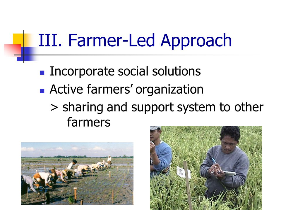 III. Farmer-Led Approach Incorporate social solutions Active farmers' organization > sharing and support system to other farmers