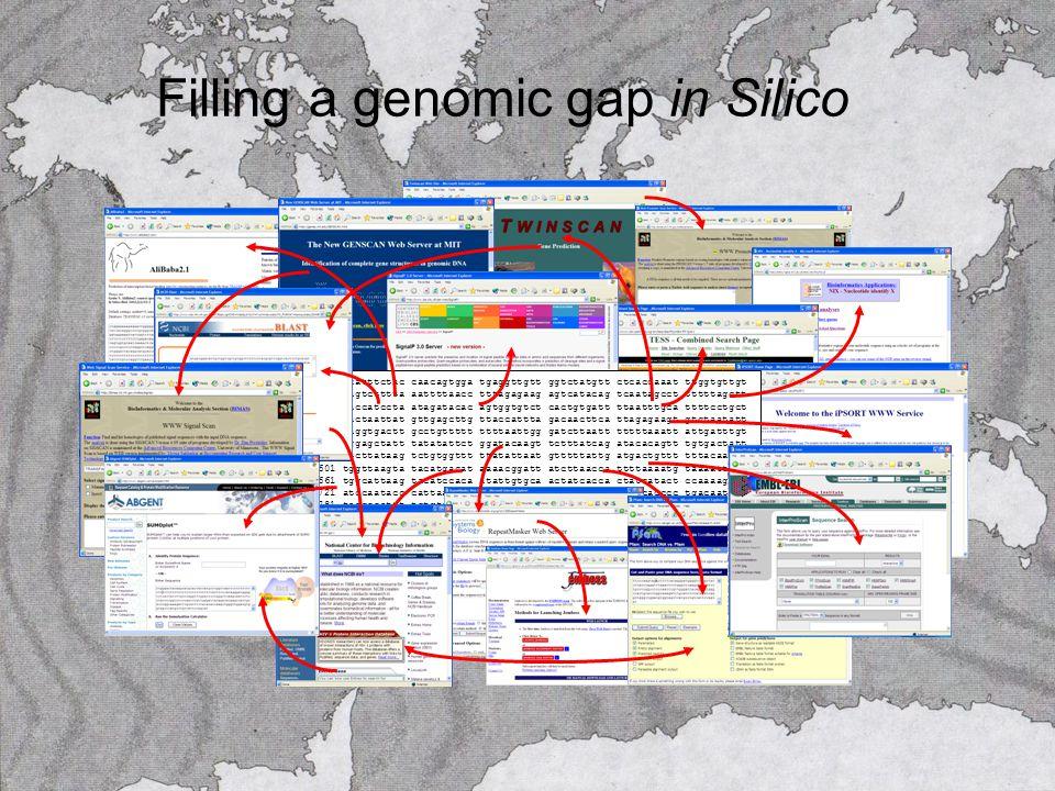 Filling a genomic gap in Silico 12181 acatttctac caacagtgga tgaggttgtt ggtctatgtt ctcaccaaat ttggtgttgt 12241 cagtctttta aattttaacc tttagagaag agtcatacag tcaatagcct tttttagctt 12301 gaccatccta atagatacac agtggtgtct cactgtgatt ttaatttgca ttttcctgct 12361 gactaattat gttgagcttg ttaccattta gacaacttca ttagagaagt gtctaatatt 12421 taggtgactt gcctgttttt ttttaattgg gatcttaatt tttttaaatt attgatttgt 12481 aggagctatt tatatattct ggatacaagt tctttatcag atacacagtt tgtgactatt 12541 ttcttataag tctgtggttt ttatattaat gtttttattg atgactgttt tttacaattg 12601 tggttaagta tacatgacat aaaacggatt atcttaacca ttttaaaatg taaaattcga 12661 tggcattaag tacatccaca atattgtgca actatcacca ctatcatact ccaaaagggc 12721 atccaatacc cattaagctg tcactcccca atctcccatt ttcccacccc tgacaatcaa 12781 taacccattt tctgtctcta tggatttgcc tgttctggat attcatatta atagaatcaa