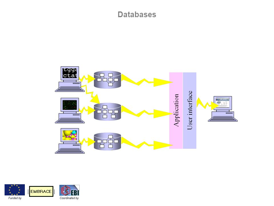 Application User interface Databases