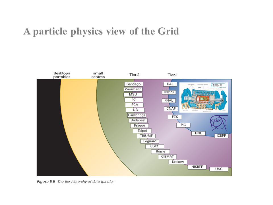 A particle physics view of the Grid