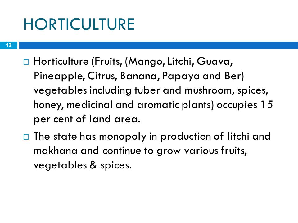 HORTICULTURE 12  Horticulture (Fruits, (Mango, Litchi, Guava, Pineapple, Citrus, Banana, Papaya and Ber) vegetables including tuber and mushroom, spi