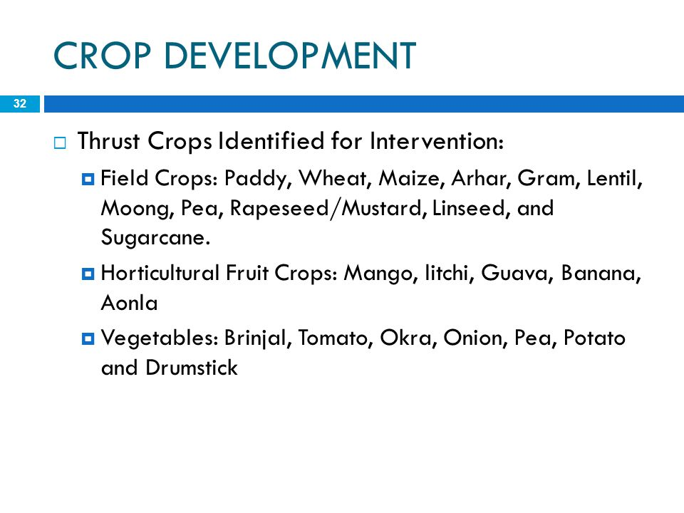 CROP DEVELOPMENT 32  Thrust Crops Identified for Intervention:  Field Crops: Paddy, Wheat, Maize, Arhar, Gram, Lentil, Moong, Pea, Rapeseed/Mustard,