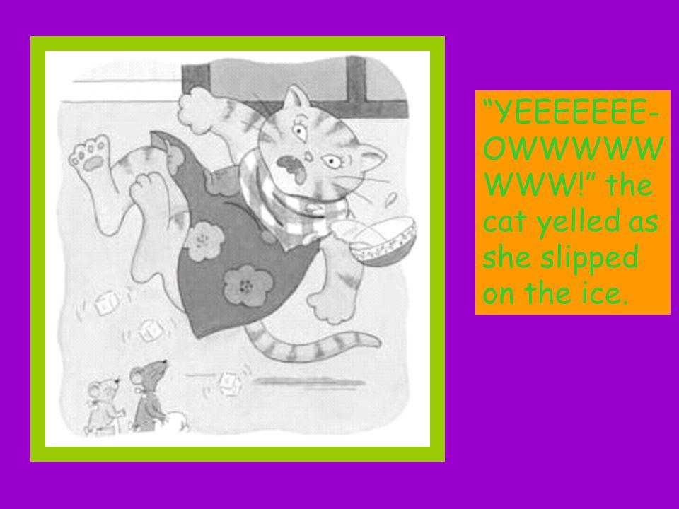YEEEEEEE- OWWWWW WWW! the cat yelled as she slipped on the ice.