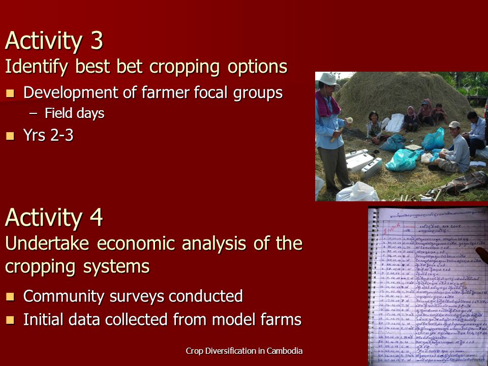 Crop Diversification in Cambodia Activity 3 Identify best bet cropping options Community surveys conducted Community surveys conducted Initial data co
