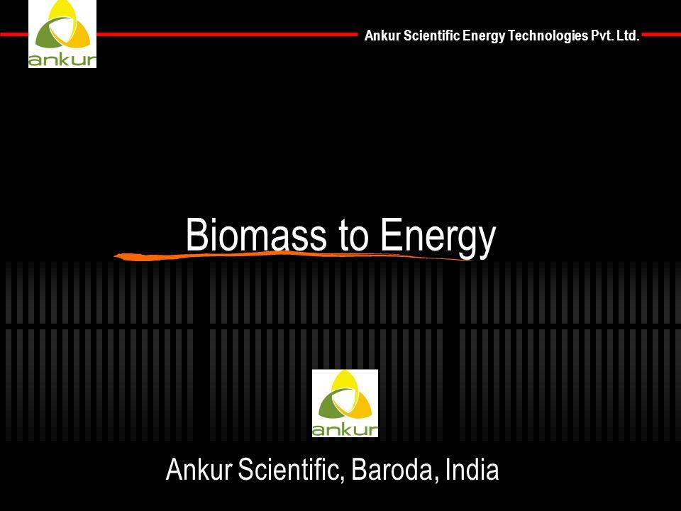 Ankur Scientific Energy Technologies Pvt. Ltd. Biomass to Energy Ankur Scientific, Baroda, India