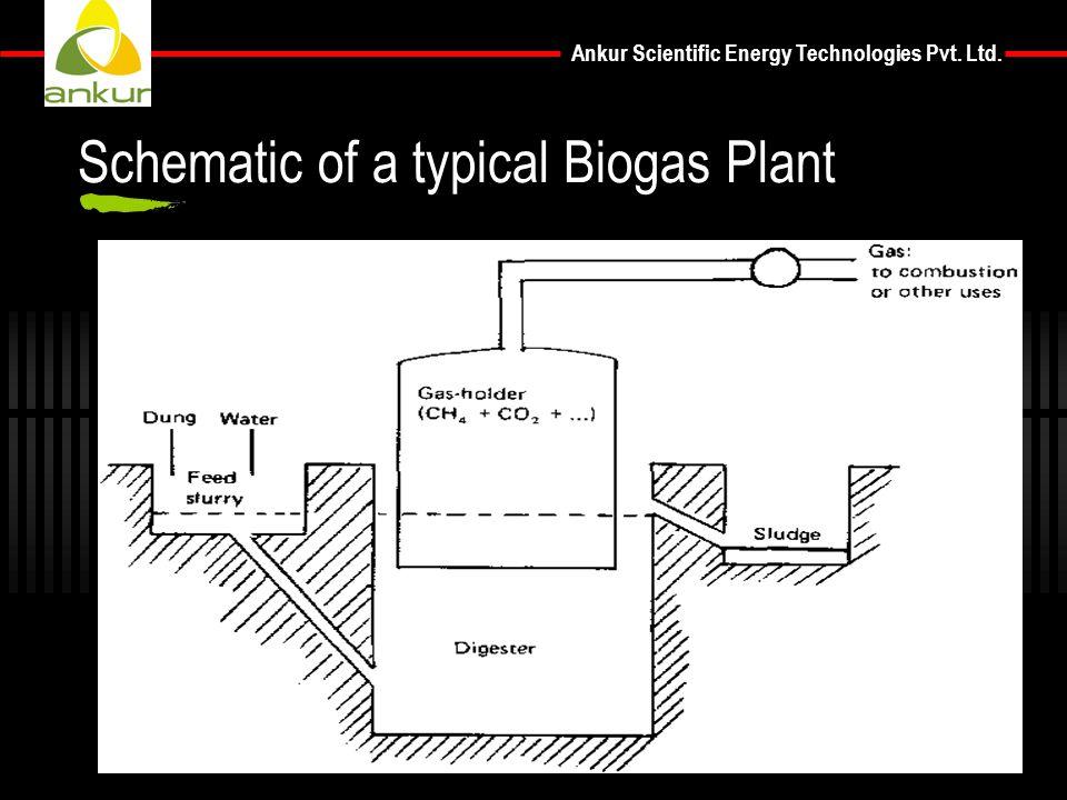 Ankur Scientific Energy Technologies Pvt. Ltd. Schematic of a typical Biogas Plant