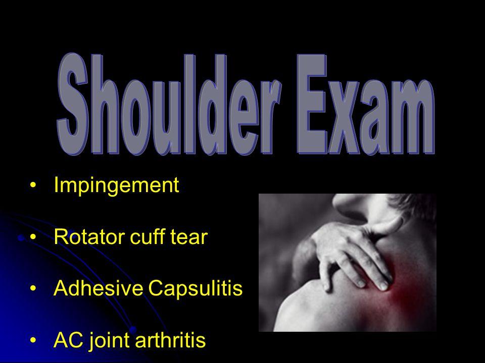 Impingement Rotator cuff tear Adhesive Capsulitis AC joint arthritis