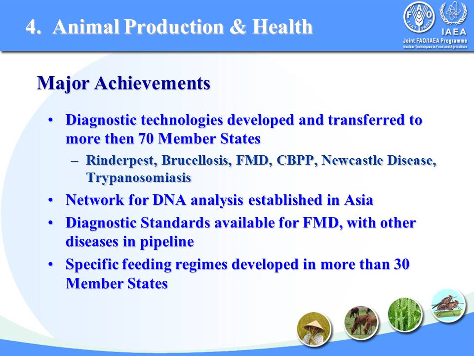 Diagnostic technologies developed and transferred to more then 70 Member StatesDiagnostic technologies developed and transferred to more then 70 Member States –Rinderpest, Brucellosis, FMD, CBPP, Newcastle Disease, Trypanosomiasis Network for DNA analysis established in AsiaNetwork for DNA analysis established in Asia Diagnostic Standards available for FMD, with other diseases in pipelineDiagnostic Standards available for FMD, with other diseases in pipeline Specific feeding regimes developed in more than 30 Member StatesSpecific feeding regimes developed in more than 30 Member States Major Achievements 4.