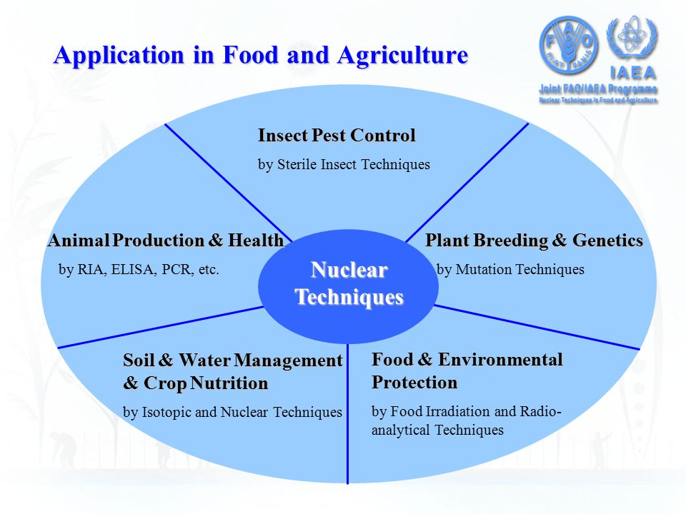 Application in Food and Agriculture Nuclear Techniques Insect Pest Control by Sterile Insect Techniques Plant Breeding & Genetics by Mutation Techniques Animal Production & Health by RIA, ELISA, PCR, etc.