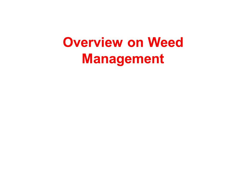 Overview on Weed Management