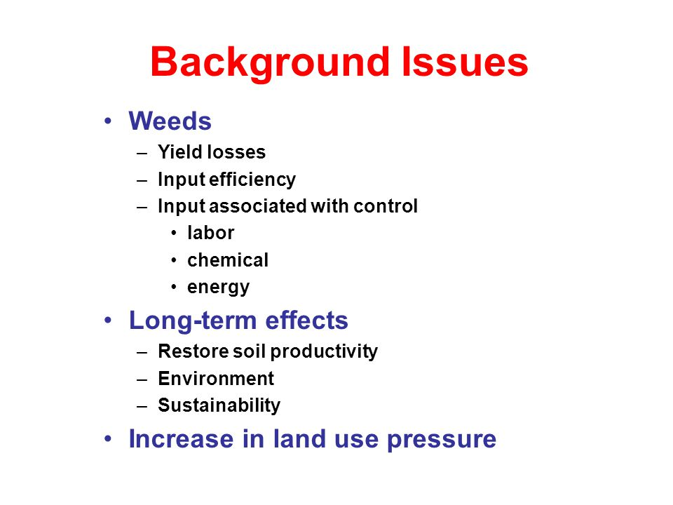 Weedy rice: Emerging problem in DSR Stale seedbed Certified seed (free from weedy rice seeds) Removing panicles before seed production Hybrid rice Cultivated rice weedy rice Cultivated rice weedy rice Weedy rice in rice field