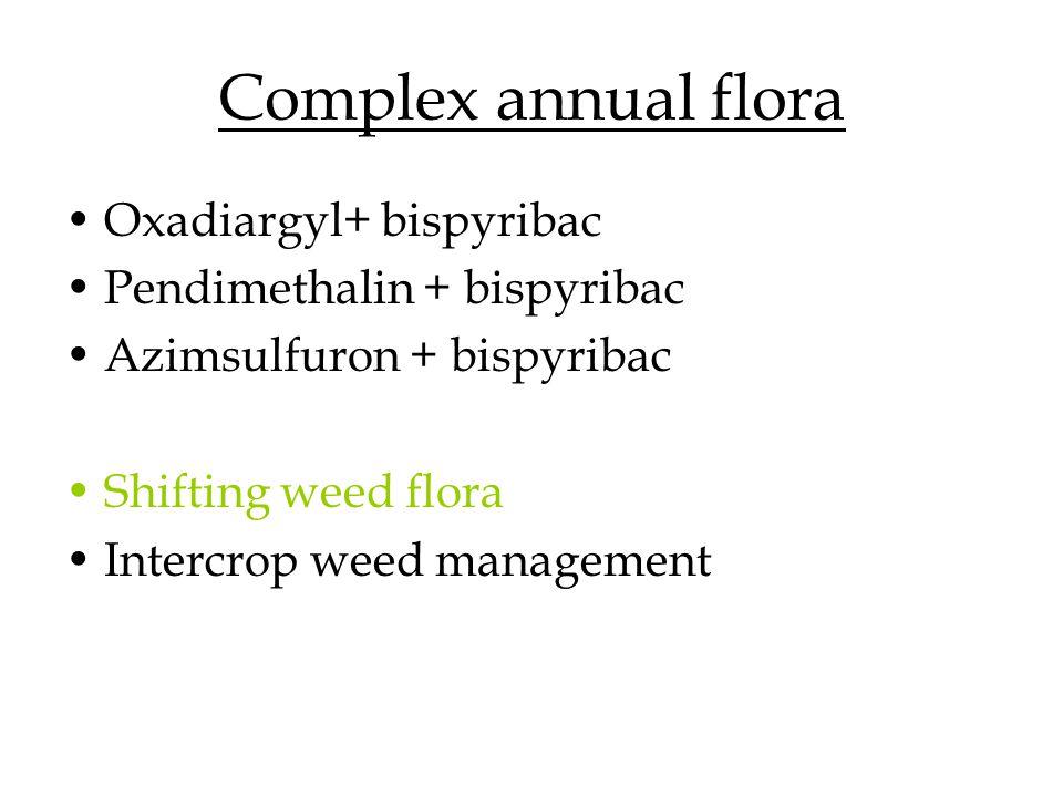 Complex annual flora Oxadiargyl+ bispyribac Pendimethalin + bispyribac Azimsulfuron + bispyribac Shifting weed flora Intercrop weed management