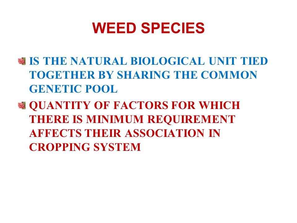 WEED SPECIES IS THE NATURAL BIOLOGICAL UNIT TIED TOGETHER BY SHARING THE COMMON GENETIC POOL QUANTITY OF FACTORS FOR WHICH THERE IS MINIMUM REQUIREMENT AFFECTS THEIR ASSOCIATION IN CROPPING SYSTEM