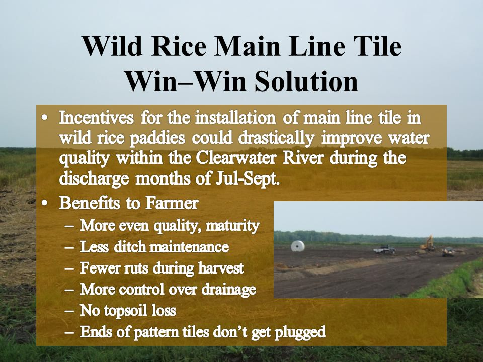 Wild Rice Main Line Tile Win–Win Solution