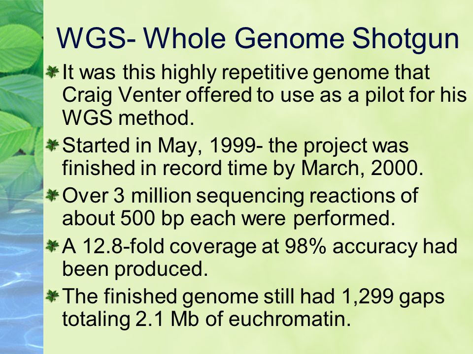 WGS- Whole Genome Shotgun It was this highly repetitive genome that Craig Venter offered to use as a pilot for his WGS method.