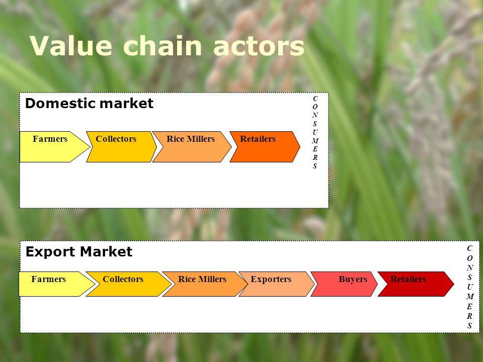 Value chain actors o Domestic consumption o Export Domestic market Farmers CollectorsRice Millers Retailers CONSUMERSCONSUMERS Export Market FarmersCollectorsRice MillersExportersBuyersRetailers CONSUMERSCONSUMERS