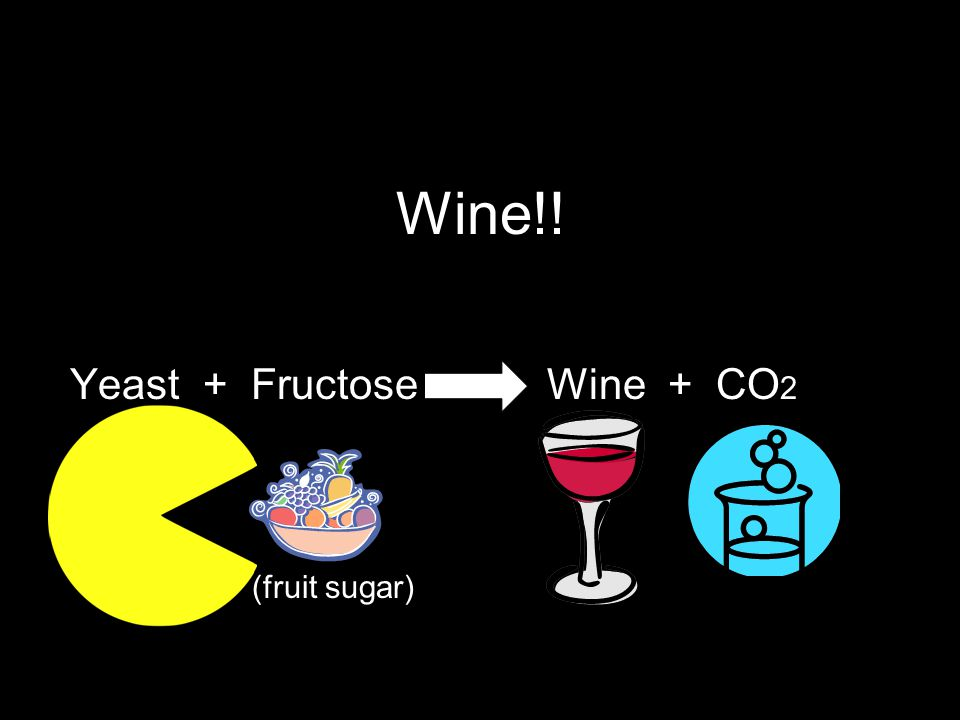 Wine!! Yeast + Fructose Wine + CO 2 (fruit sugar)