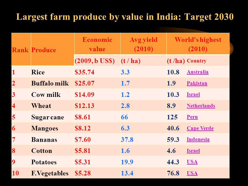Largest farm produce by value in India: Target 2030 RankProduce Economic value Avg yield (2010) World s highest (2010) (2009, b US$)(t / ha) Country 1Rice$35.743.310.8 Australia 2Buffalo milk$25.071.71.9 Pakistan 3Cow milk$14.091.210.3 Israel 4Wheat$12.132.88.9 Netherlands 5Sugar cane$8.6166125 Peru 6Mangoes$8.126.340.6 Cape Verde 7Bananas$7.6037.859.3 Indonesia 8Cotton$5.811.64.6 Israel 9Potatoes$5.3119.944.3 USA 10F.Vegetables$5.2813.476.8 USA