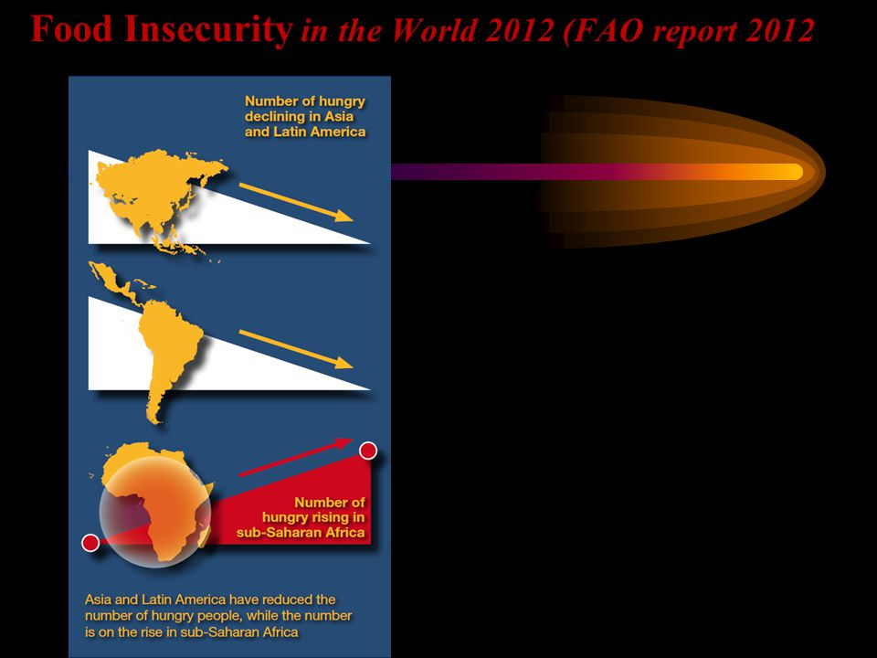 Food Insecurity in the World 2012 (FAO report 2012