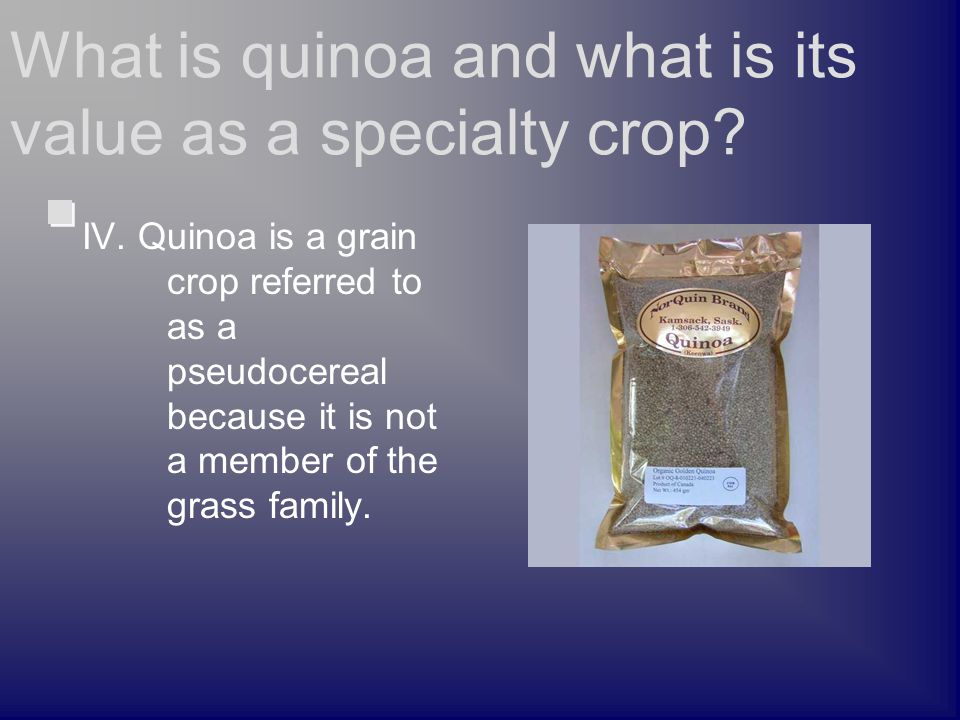 IV. Quinoa is a grain crop referred to as a pseudocereal because it is not a member of the grass family. What is quinoa and what is its value as a spe