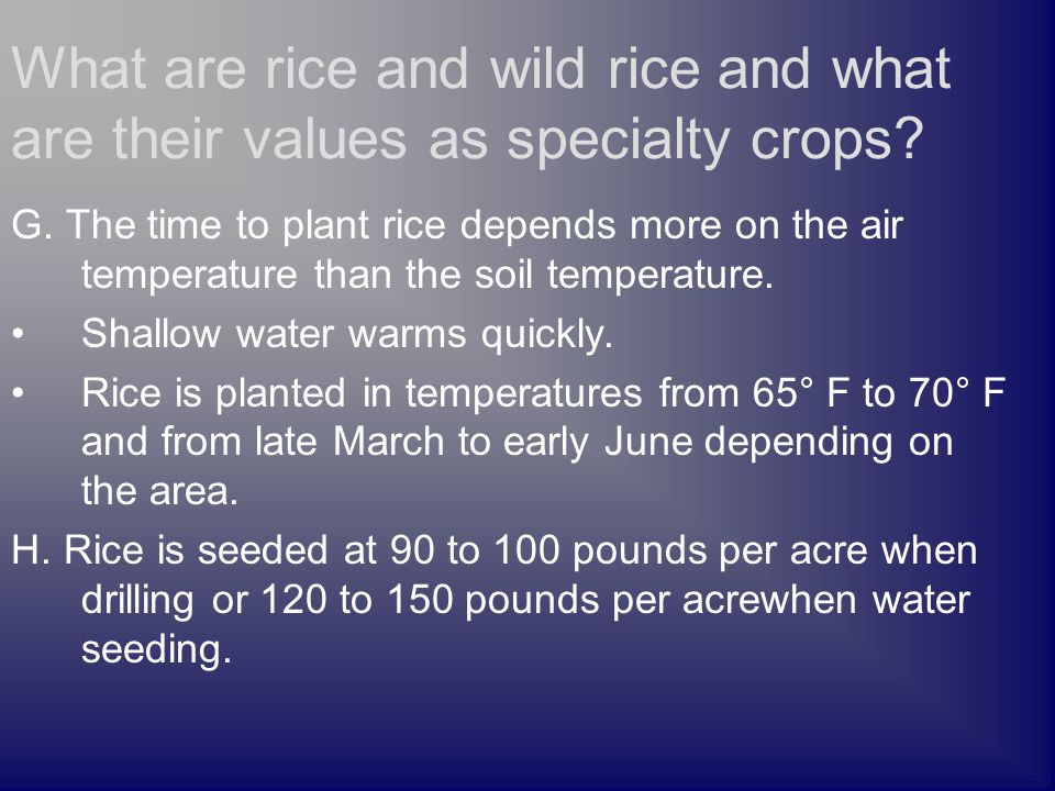 G. The time to plant rice depends more on the air temperature than the soil temperature.