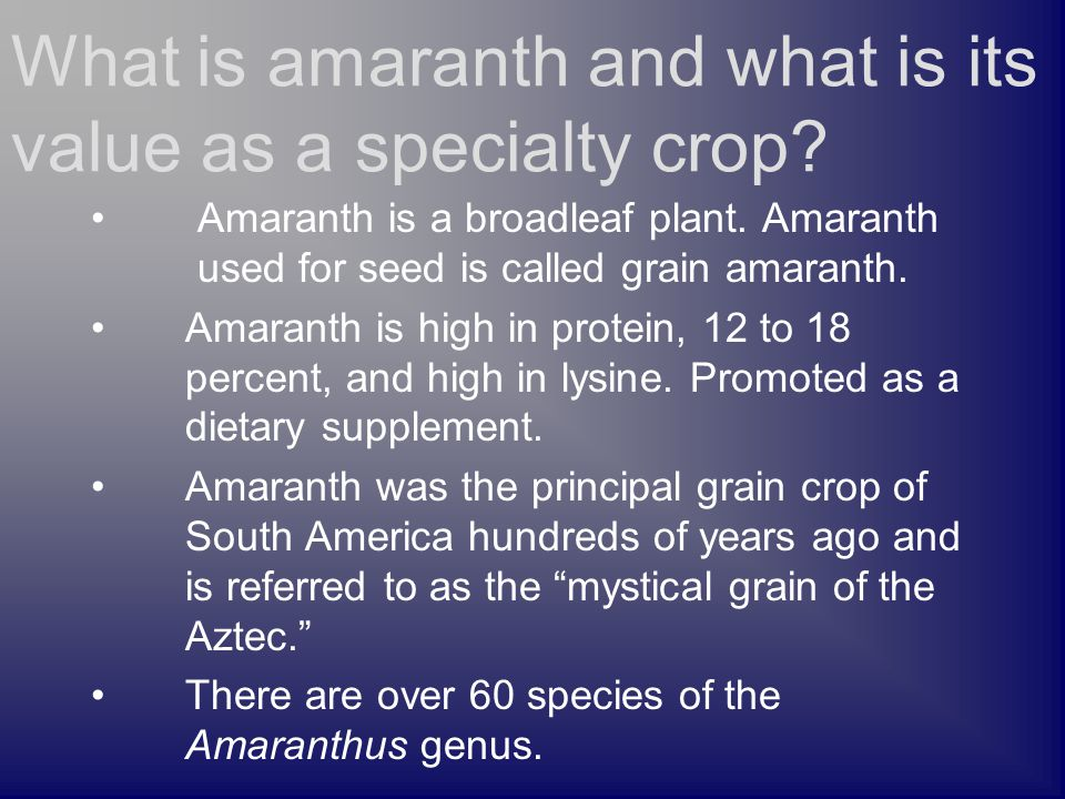 Amaranth is a broadleaf plant. Amaranth used for seed is called grain amaranth. Amaranth is high in protein, 12 to 18 percent, and high in lysine. Pro