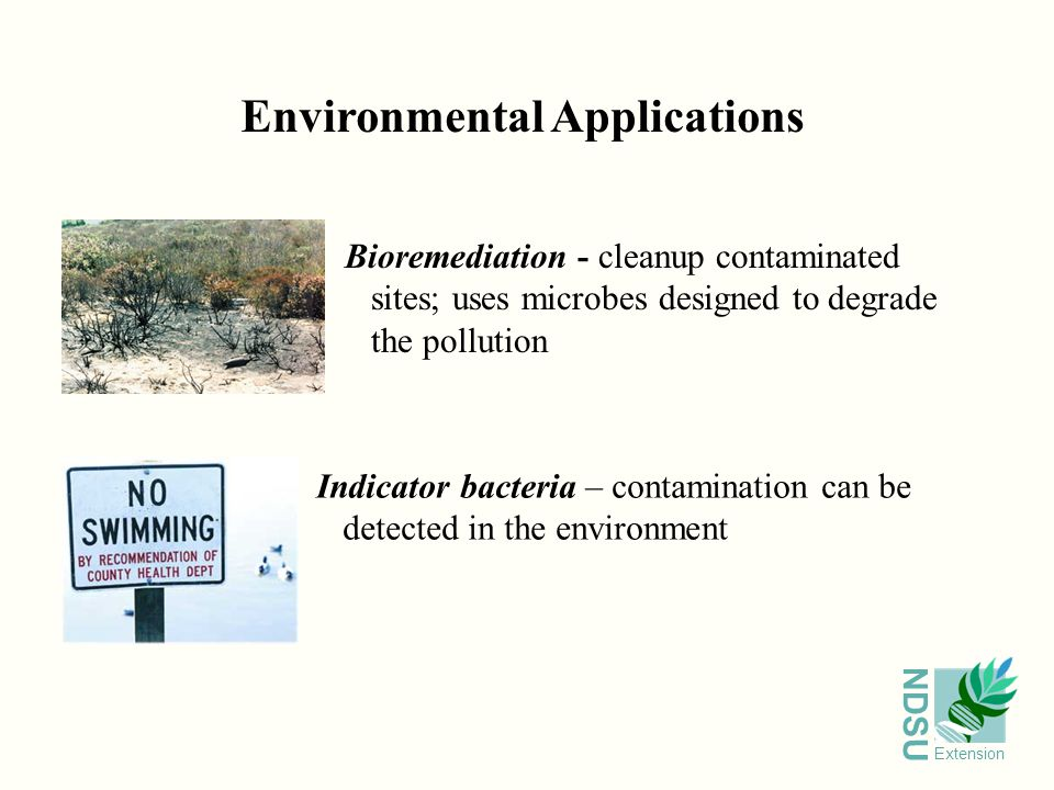 NDSU Extension Environmental Applications Bioremediation - cleanup contaminated sites; uses microbes designed to degrade the pollution Indicator bacteria – contamination can be detected in the environment