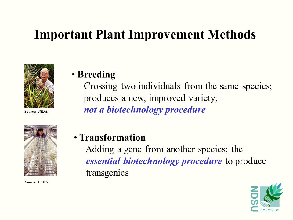 NDSU Extension Important Plant Improvement Methods Breeding Crossing two individuals from the same species; produces a new, improved variety; not a biotechnology procedure Transformation Adding a gene from another species; the essential biotechnology procedure to produce transgenics Source: USDA
