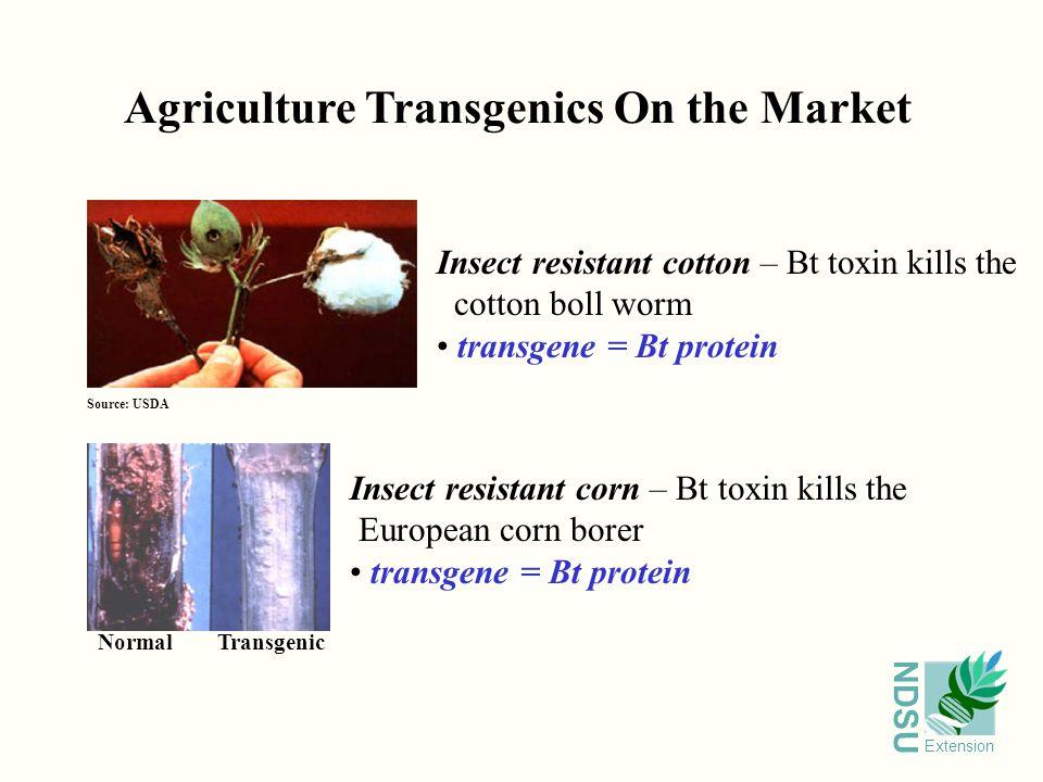 NDSU Extension The Next Test Is The Field Non-transgenics Transgenics Herbicide Resistance