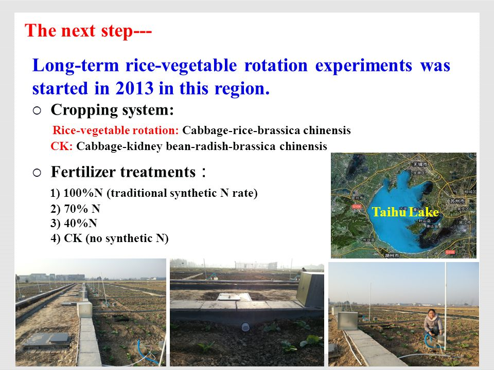研究进展 Long-term rice-vegetable rotation experiments was started in 2013 in this region.  Cropping system: Rice-vegetable rotation: Cabbage-rice-brassi