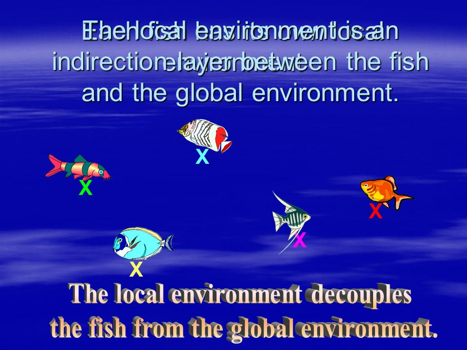 Each fish has its own local environment X X X X X The local environment is an indirection layer between the fish and the global environment.