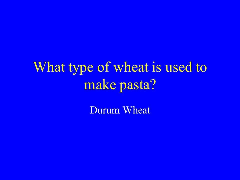 What type of wheat is used to make pasta?