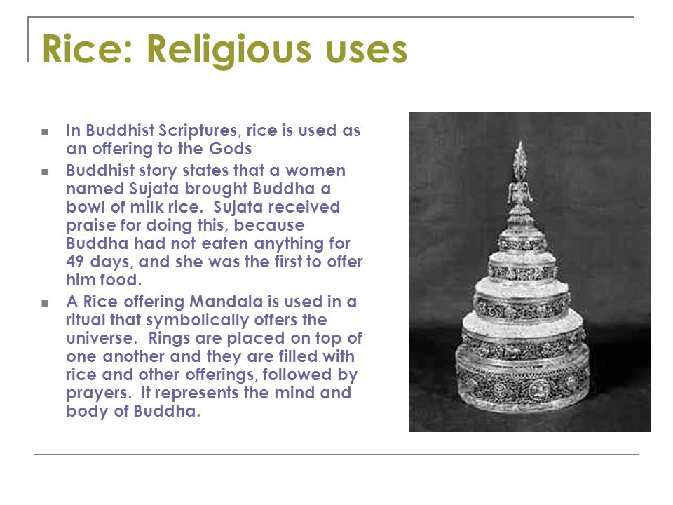 Rice: Religious uses In Buddhist Scriptures, rice is used as an offering to the Gods Buddhist story states that a women named Sujata brought Buddha a bowl of milk rice.