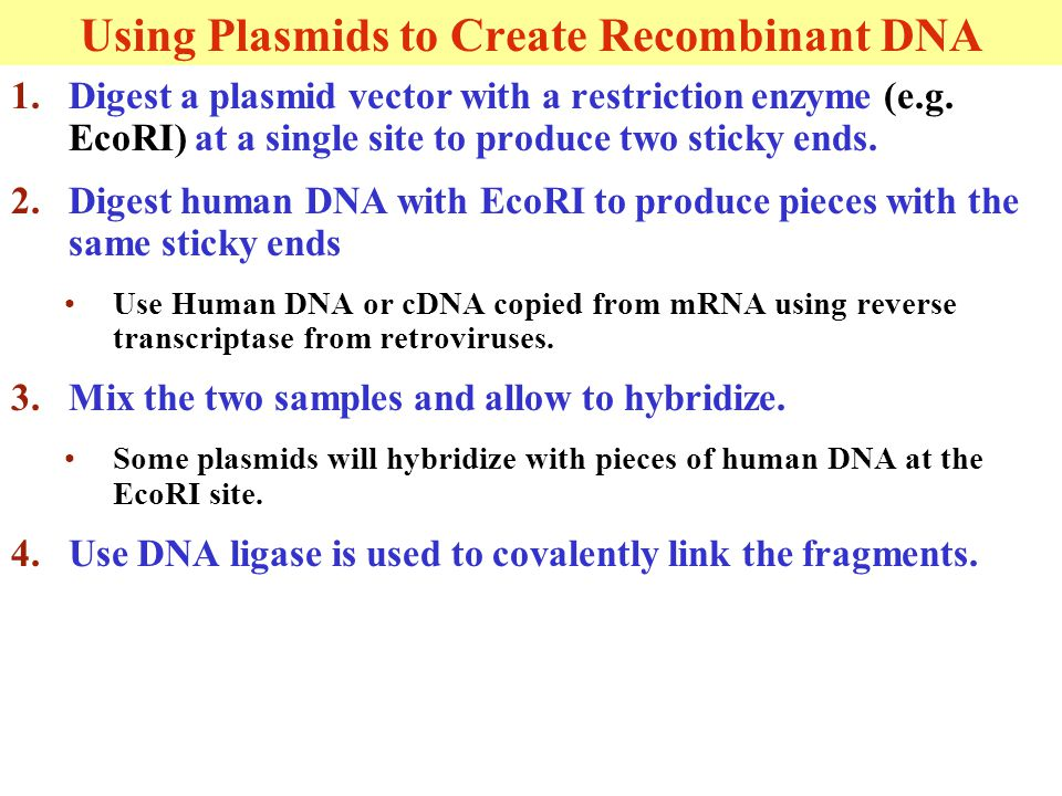 1.Digest a plasmid vector with a restriction enzyme (e.g.