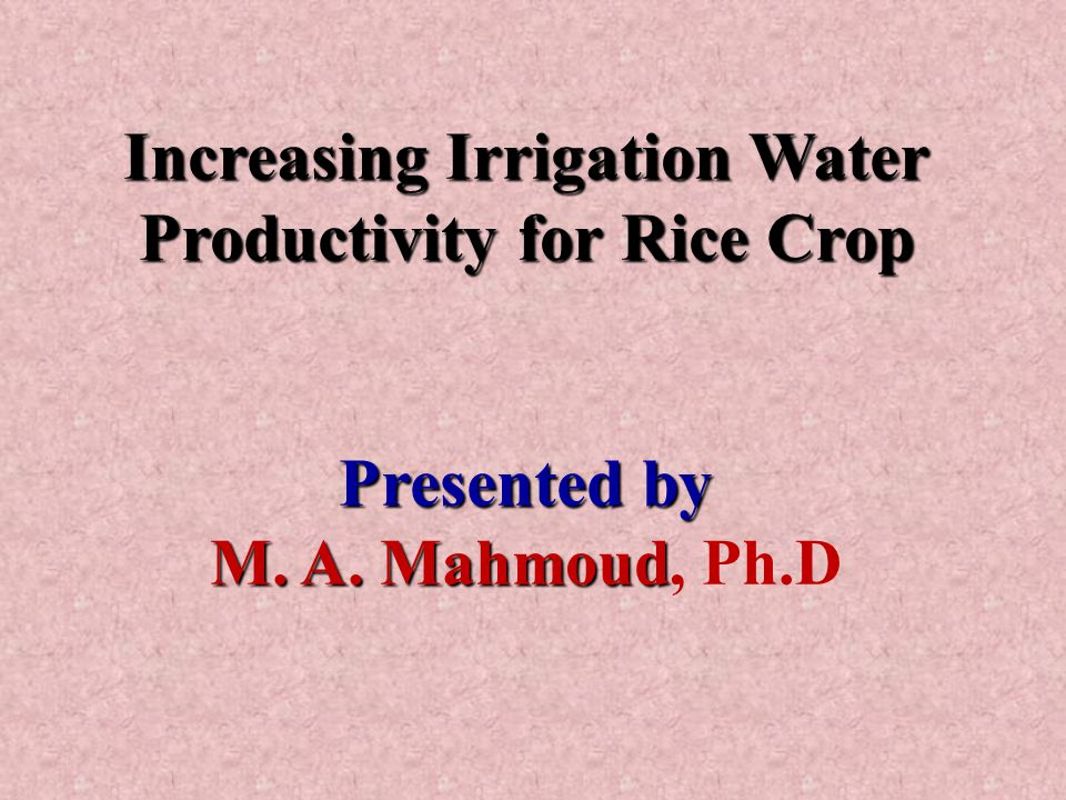 Increasing Irrigation Water Productivity for Rice Crop Presented by M.