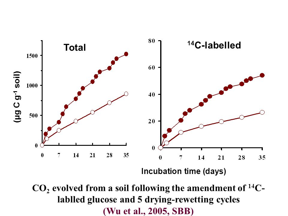 CO 2 evolved from a soil following the amendment of 14 C- lablled glucose and 5 drying-rewetting cycles (Wu et al., 2005, SBB) Total 14 C-labelled (μg