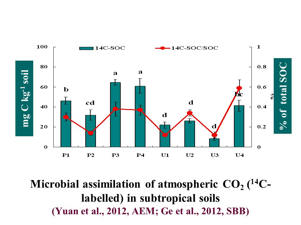 mg C kg -1 soil % of total SOC Microbial assimilation of atmospheric CO 2 ( 14 C- labelled) in subtropical soils (Yuan et al., 2012, AEM; Ge et al., 2012, SBB)