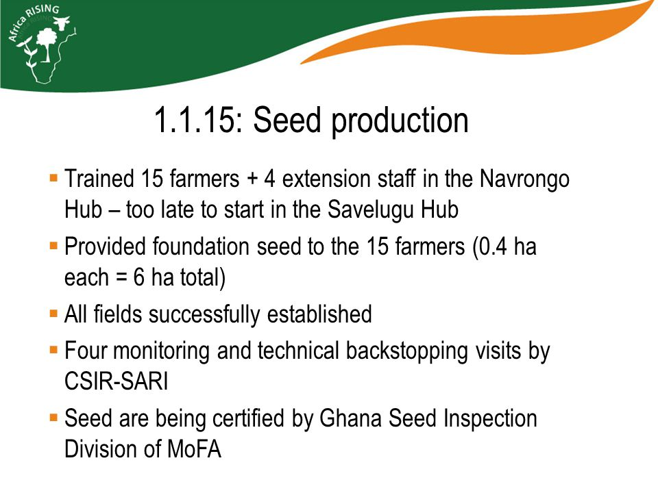  Trained 15 farmers + 4 extension staff in the Navrongo Hub – too late to start in the Savelugu Hub  Provided foundation seed to the 15 farmers (0.4 ha each = 6 ha total)  All fields successfully established  Four monitoring and technical backstopping visits by CSIR-SARI  Seed are being certified by Ghana Seed Inspection Division of MoFA 1.1.15: Seed production
