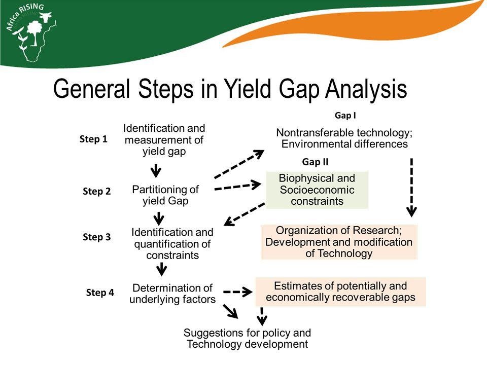General Steps in Yield Gap Analysis