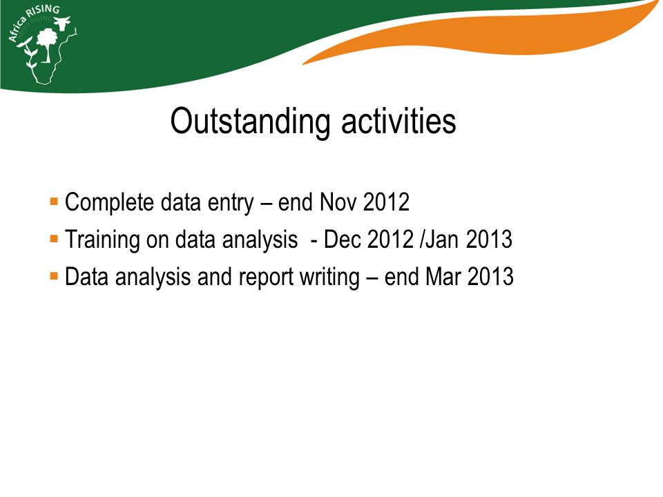 Complete data entry – end Nov 2012  Training on data analysis - Dec 2012 /Jan 2013  Data analysis and report writing – end Mar 2013 Outstanding activities