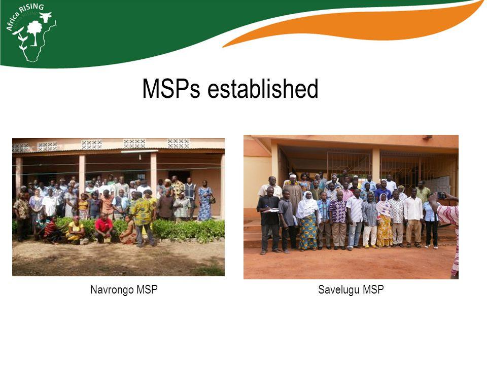 MSPs established Navrongo MSP Savelugu MSP