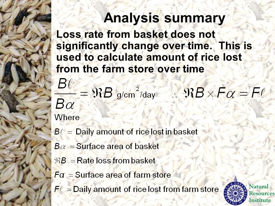 Analysis summary Loss rate from basket does not significantly change over time. This is used to calculate amount of rice lost from the farm store over